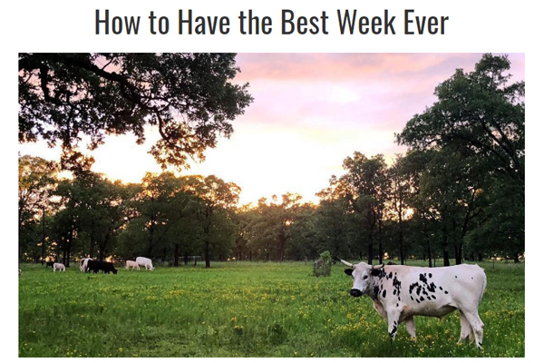 How to Have the Best Week Ever